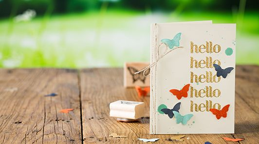 Bundle and save 15 percent on this butterfly stamp set and punch between August 29-September 30, 2013!