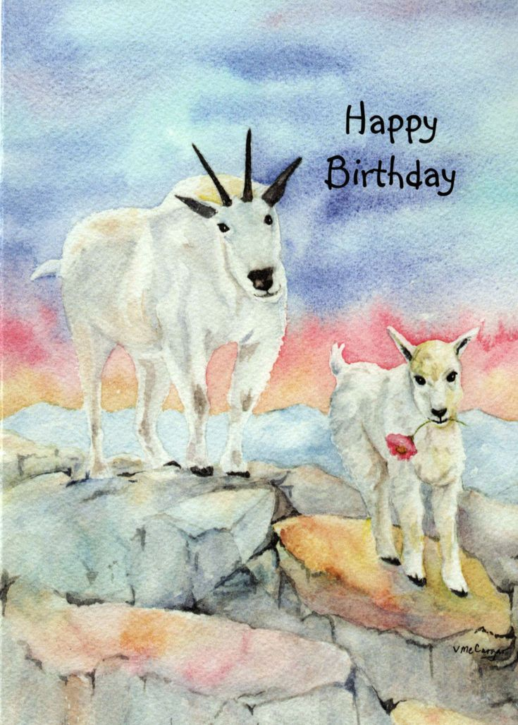 24 best Birthday Cards images – Goat Birthday Card