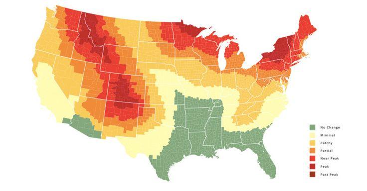 Fall foliage map 2015.