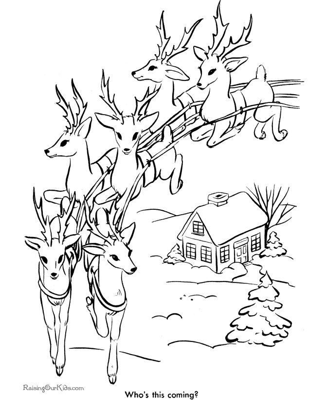 santas reindeer coloring pages santas reindeer in flight coloring sheet - Christmas Coloring Pages Reindeer