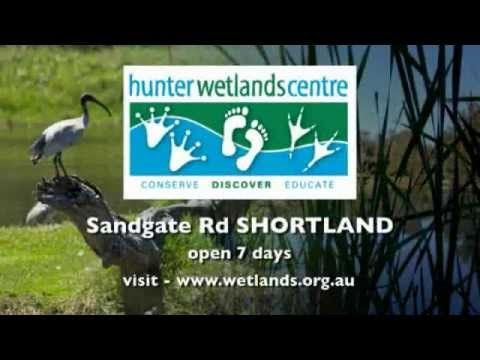 Hunter Wetlands Centre Australia has great nature activities for kids and families for the school holidays.
