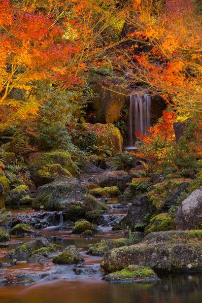 Yushien garden, Matsue, Shimane, Japan 由志園 島根県