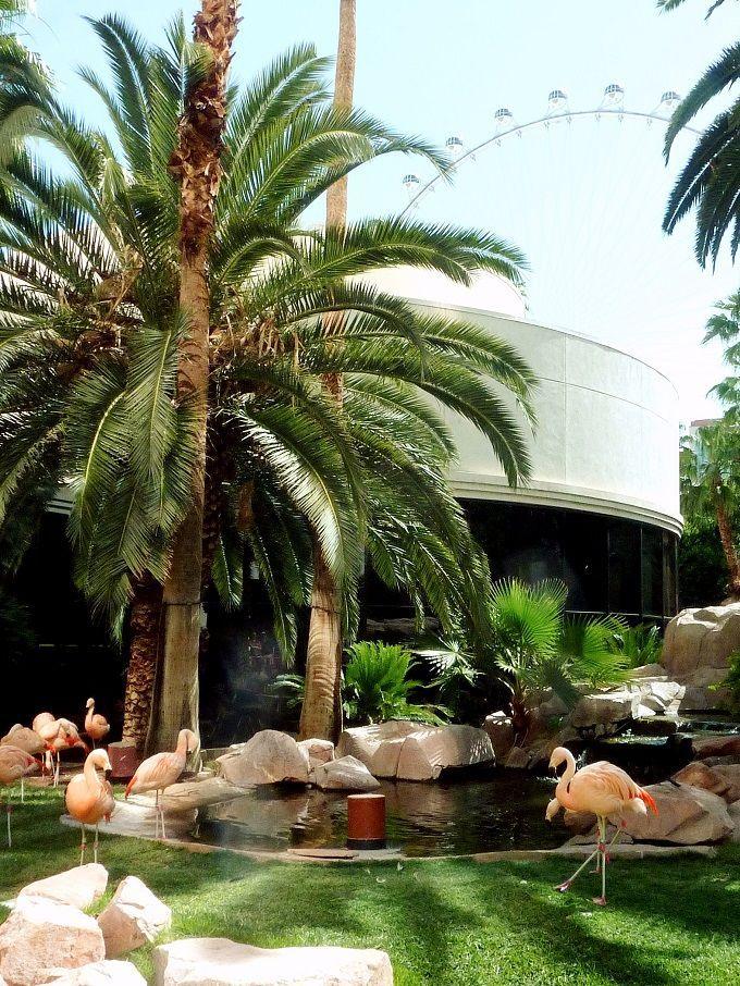 米国ラスベガスのホテル「フラミンゴ」にて。Flamingo Hotel in Las Vegas, USA.
