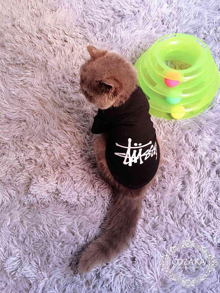 猫服 ステューシー ロゴtシャツ stussy 猫用 カットソー ブラック ストリート系 ブランド ペット 洋服 小型犬用 半袖 アメリカン系 ペットウェア☆ http://www.cozaka.com/goods/stussy-t-shirt-181.html
