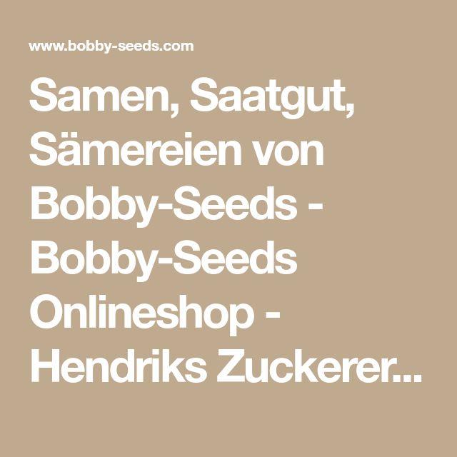 Samen, Saatgut, Sämereien von Bobby-Seeds - Bobby-Seeds Onlineshop - Hendriks Zuckererbse BIO Samen Hendriks Zuckererbse BIO 1BR56303