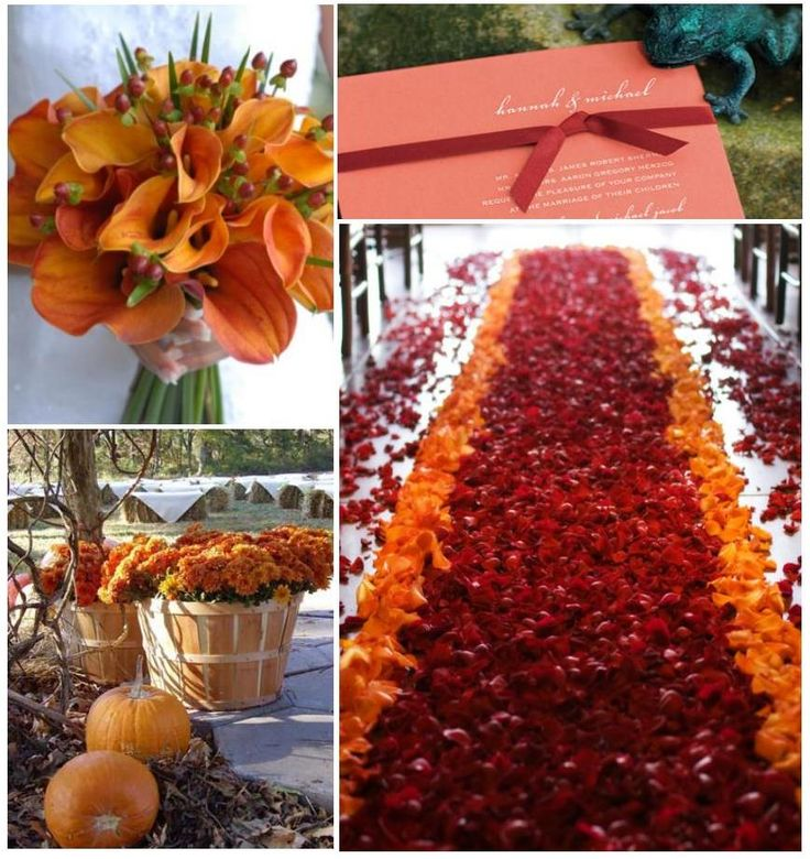 193 best fall wedding flowers images on pinterest pumpkin autumn wedding decoration the top 8 ways to incorporate the lovely fall colors on your big day junglespirit Choice Image