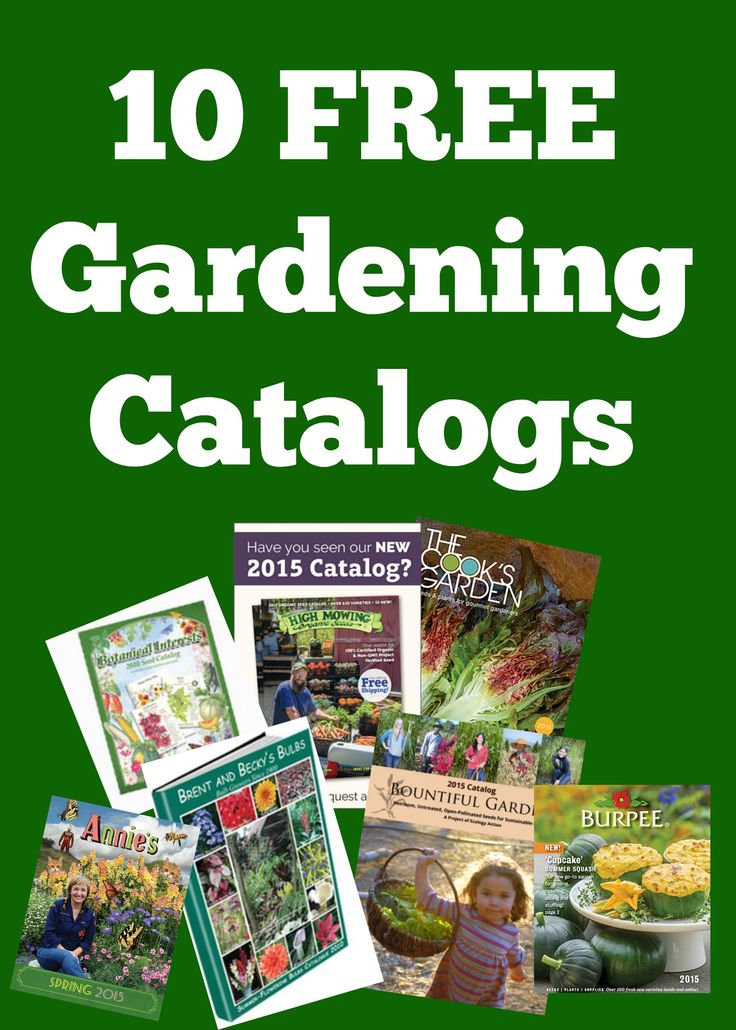 10 Free Gardening Catalogs ~ it's time to get some inspiration for the Spring! Gardening Catalogs are always PACKED with great information, tips and ideas!