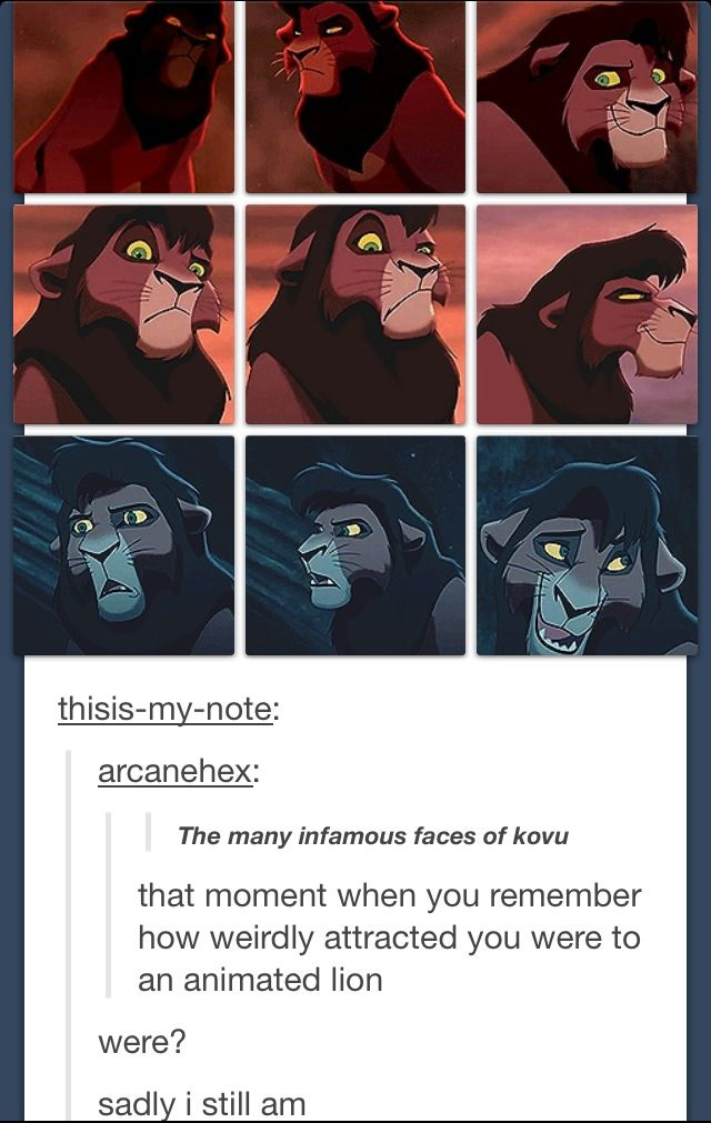 Sad but true. I was watching this a few weeks ago and I was all, Why am I so attracted to this lion? And i laughed so hard when i finally found out other people had that problem too!