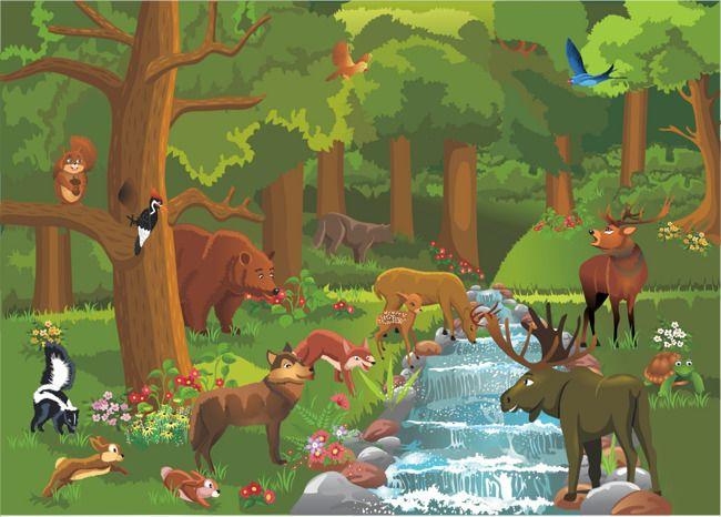 Cartoon Forest Forest Cartoon Forest Animals Illustration Forest Illustration