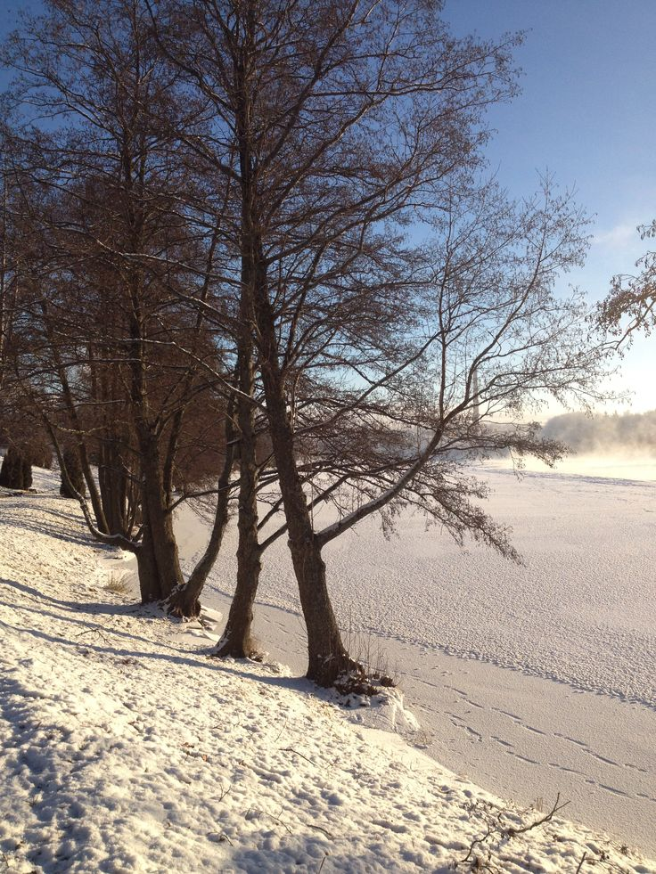 Winter in Kuusankoski, Finland