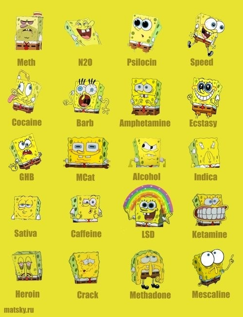 Bob under drugs