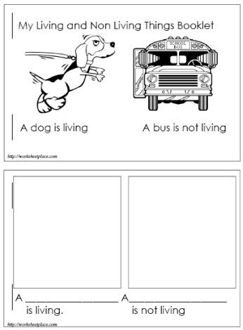 living and non living things booklet living vs non living pinterest. Black Bedroom Furniture Sets. Home Design Ideas