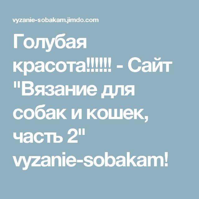 """Голубая красота!!!!!! - Сайт """"Вязание для собак и кошек, часть 2"""" vyzanie-sobakam!"""