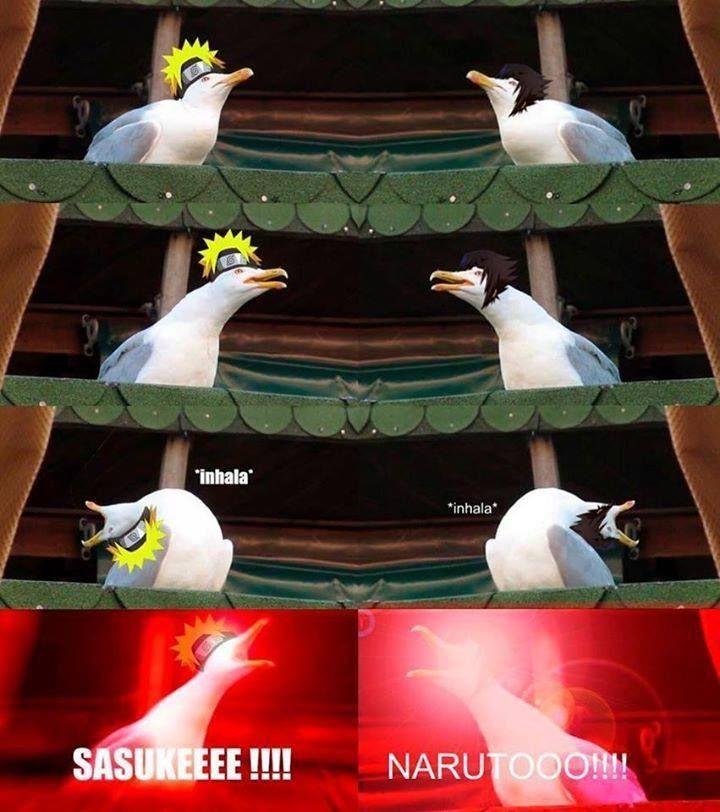 Omg hahahahahahahahhahha