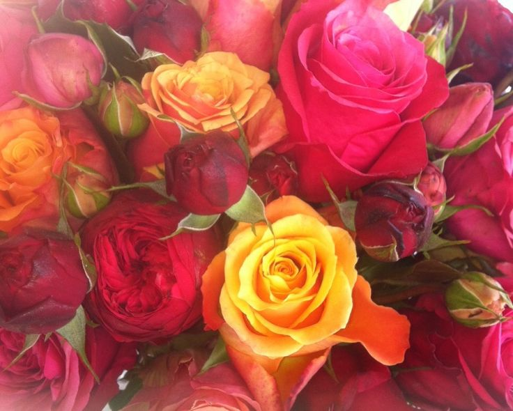 It's all about the roses! With so many colours available.