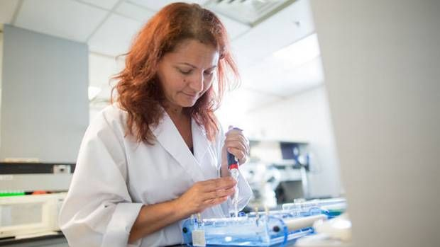 Dr. Phyllis Billia's unique research into heart regeneration holds great promise