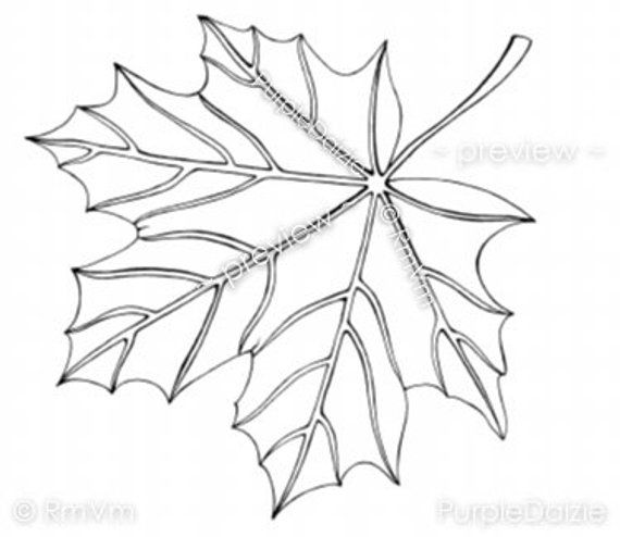 Big Tree Without Leaves Coloring Page Leaf Coloring Page Coloring Pages Coloring Books