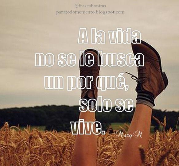 A la vida no se le busca un por qué, solo se vive.