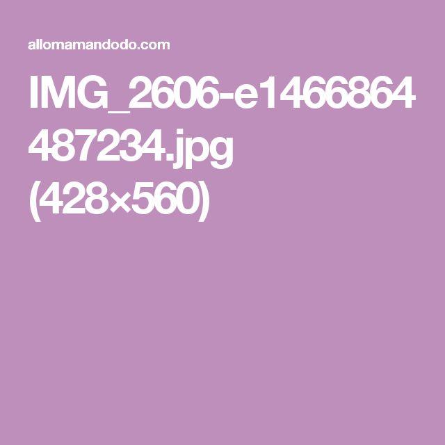 IMG_2606-e1466864487234.jpg (428×560)