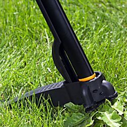 Lovely MOOS und Unkraut im Rasen bek mpfen