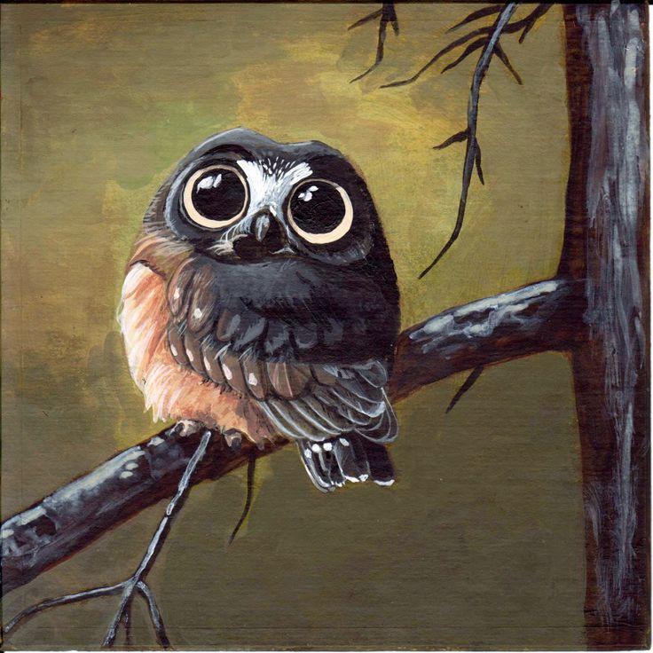 Owl Drawings | Cute Owl 2