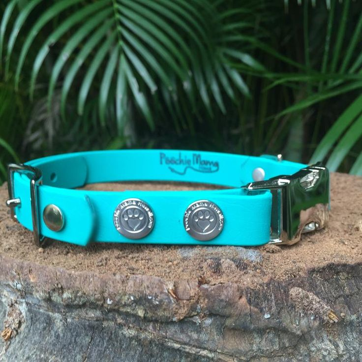 We can go with this one! We love dogs and stamps, so combining the two is an excellent choice! www.PoochieMamaHawaii.com uses a rubber stamp to brand her dog collars.