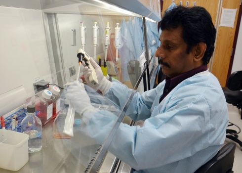 Virginia Tech study finds virus promising for prostate cancer treatment | Virginia Tech | Virginia Tech