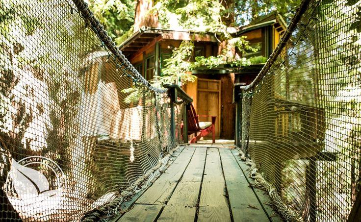 Glamping near Santa Cruz, Corralitos CA | Glamping Monterey Bay Tree house $125 a night