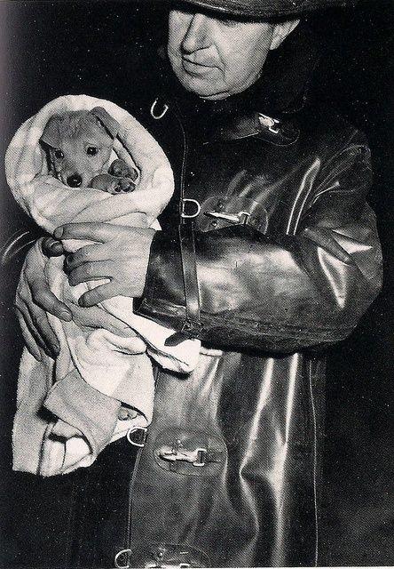 """Résultat de recherche d'images pour """"weegee policeman with dog"""""""