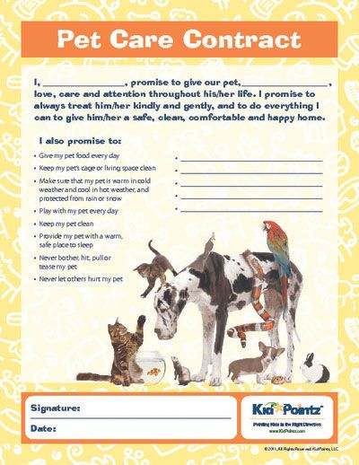 Pet Care Contract for kids Sassy School Counselor