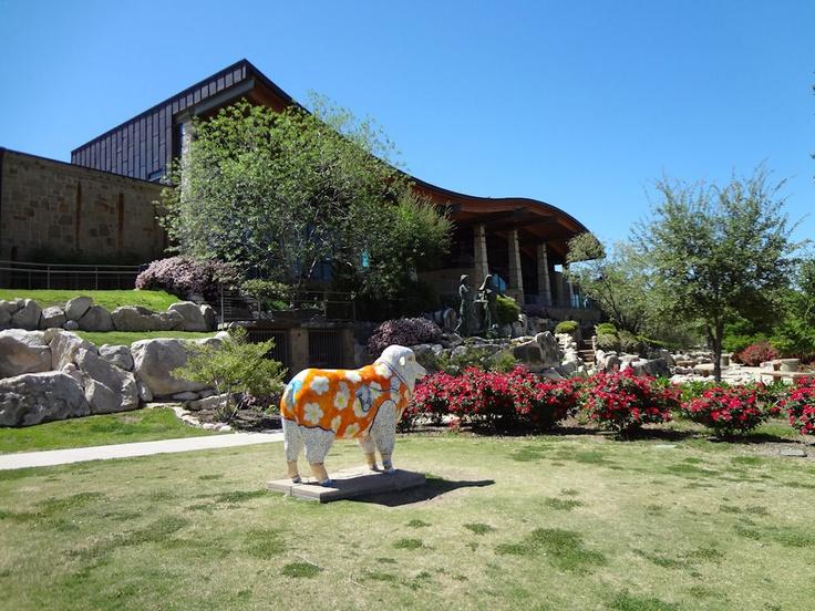 Welcoming Ewe at Vistors' Center in San Angelo, Texas