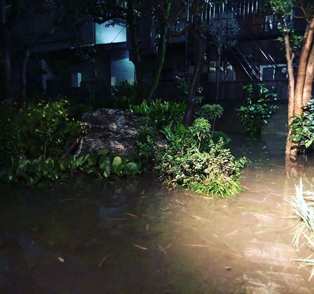 床下浸水 家に戻りました ウチは狭い通路の奥にあるんです 通路が川に