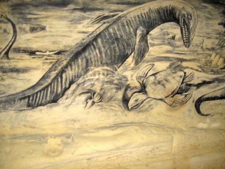 Mosasaurus, grotten Zonneberg,Sint-Pieter, Maastricht