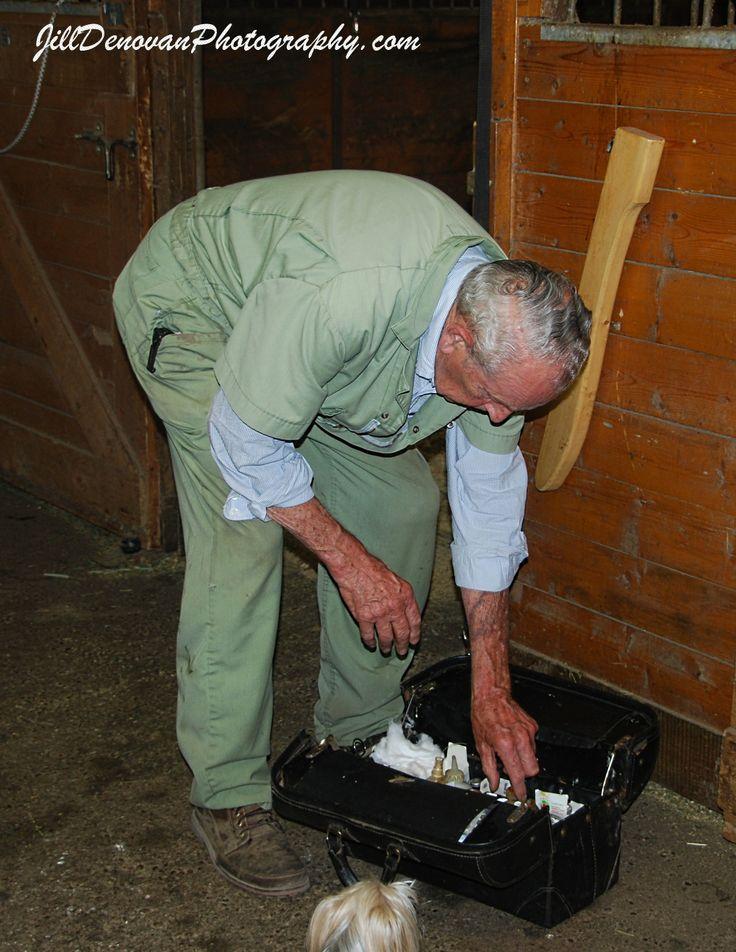 Gizzy helping much loved Horse Vet 2011 ... Doc Watt ... R.I.P. Doc!