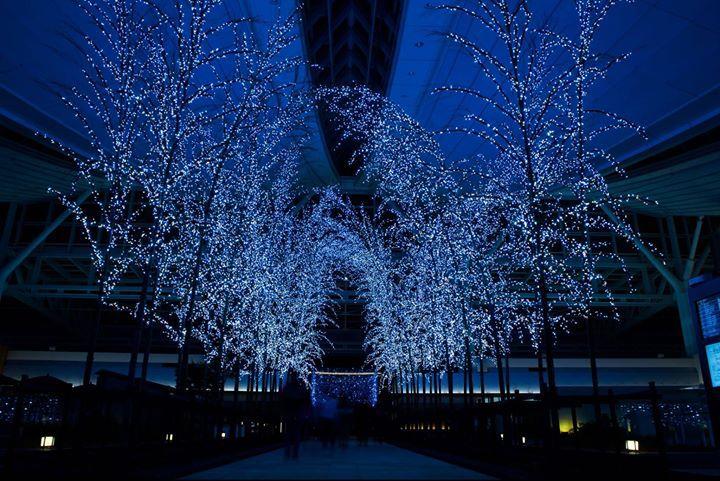 Ya se empieza a ver la iluminación navideña en #Japón   500px: Mochizuki Shutaro. http://ift.tt/1HOs1n3 - http://ift.tt/1H0PyRG
