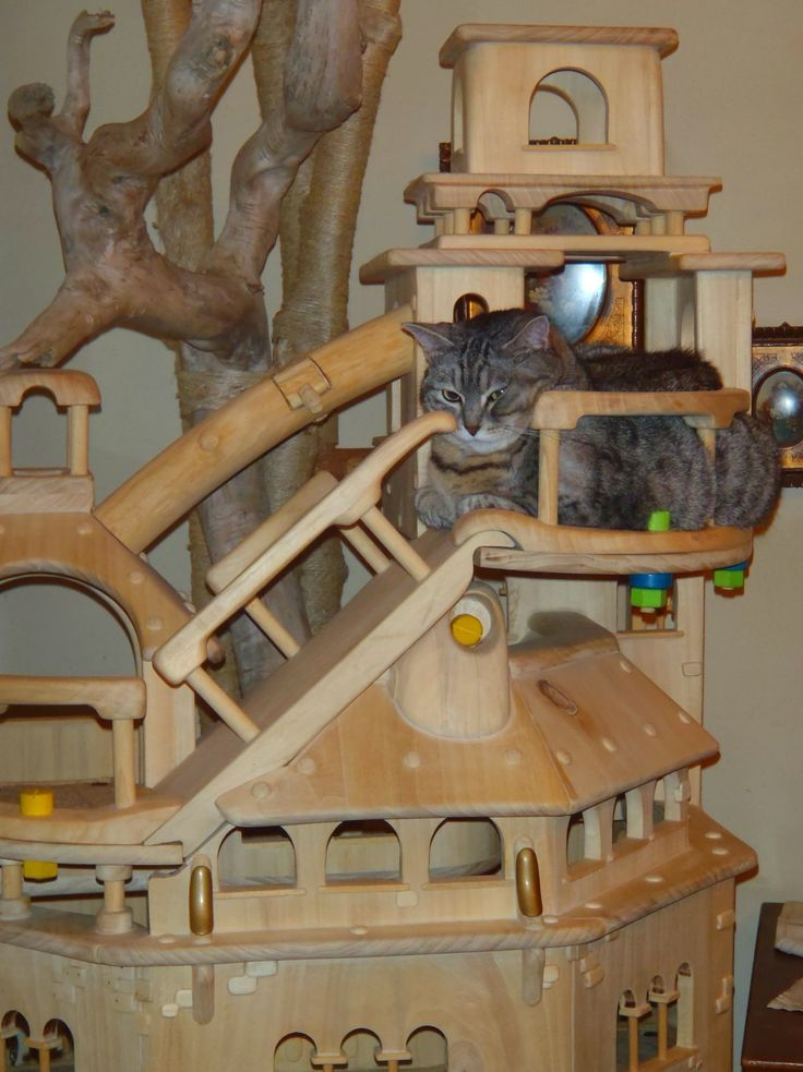 17 best images about castelli x gatti on pinterest cat for Castle cat tower