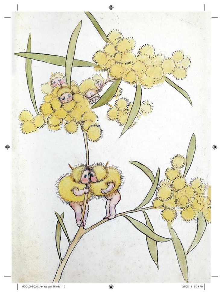 May Gibbs' Wattle Babies. May Gibbs is one of Australia's best loved classic children's book writers and artists.