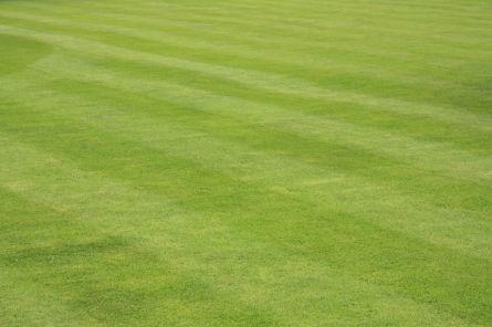 Wann ist die Zeit gekommen, um den Rasen zu vertikutieren?  - http://k.ht/3tT
