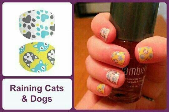 Raining Cats And Dogs Jamberry