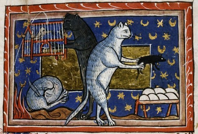 """Cats """"looking after"""" birds and sleeping, from a 13th century bestiary (MS Bodley 764, Folio 51r)."""