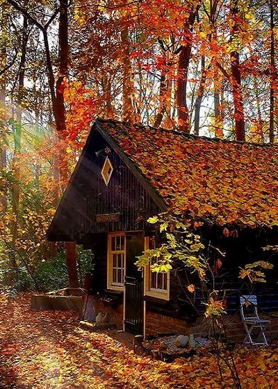 autumn house in the forest.. Netherlands | by Ton lع Jeune on 500px