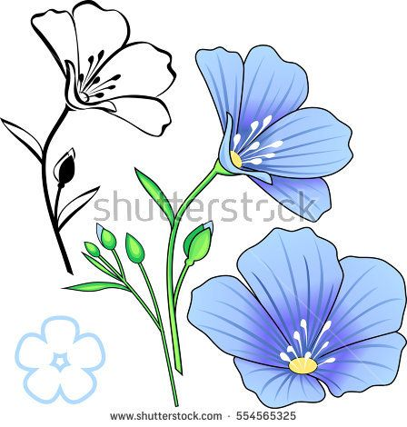 Set of flax. Vector isolated element