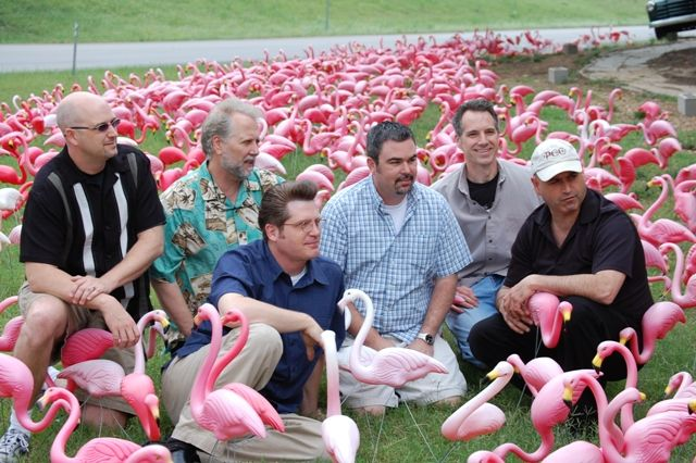 Flamingos with Antsy McClain and the Trailer Park Troubadours