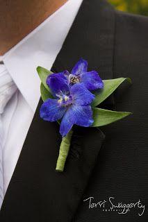 Dark Blue Delphinium Boutonniere