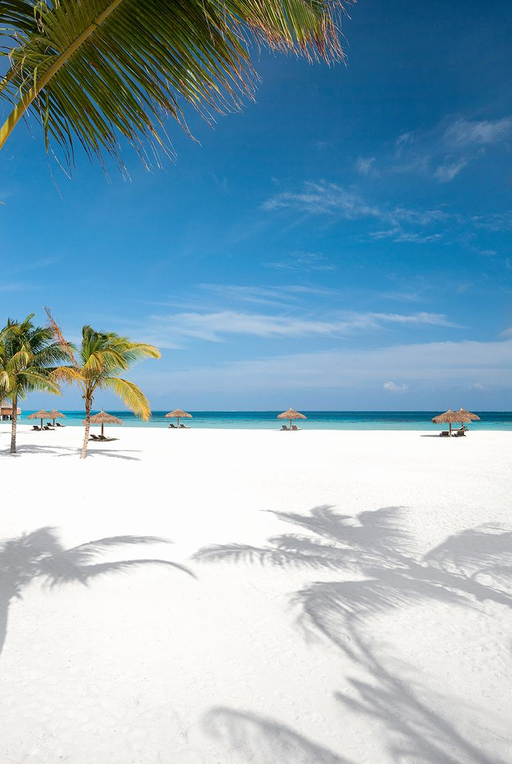White sand beach in Maldives. #island #holidays #hotel