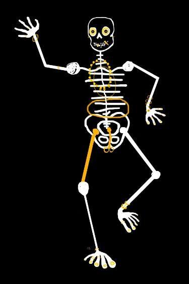 Skeleton Momo Dentor