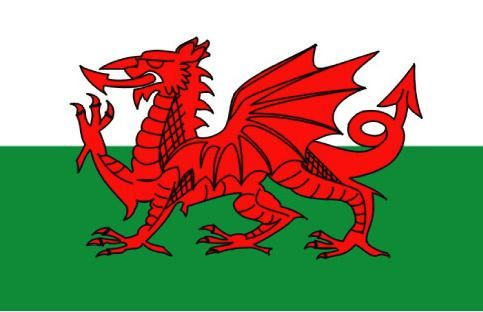 National flag of Wales from http://www.flagsinformation.com/welsh-country-flag.html  The flag of Wales consists of two horizontal halves - the top half is white and the bottom half is green. In the center of the Welsh flag is a red dragon.