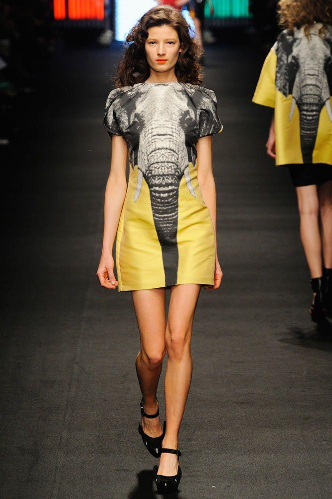 JC de CASTELBAJAC: Elephants, Jc De, Mon Style, Interesting, Elephant Obsession