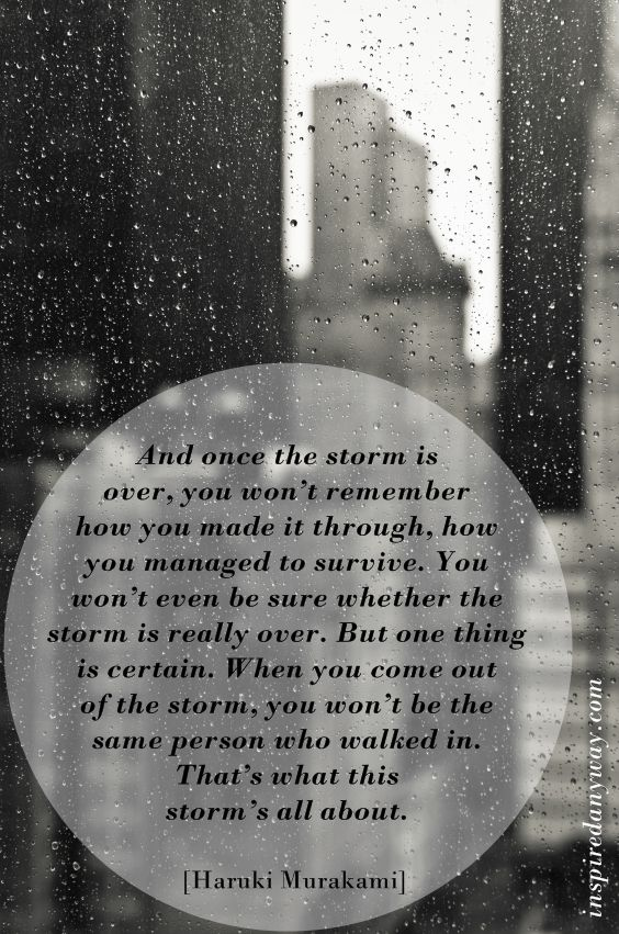 Daily Inspirational Quotes // The Storm