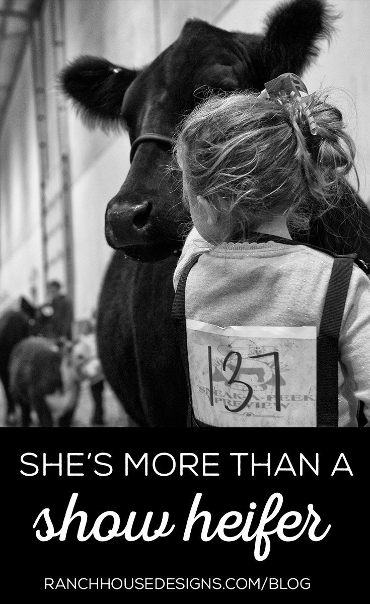 She's More Than A Show Heifer - Blog by Ranch House Designs